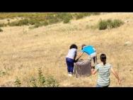 23 maio 2017: Solta pública de uma fêmea de lince-ibérico que se junta ao núcleo populacional da espécie existente no concelho de Mértola
